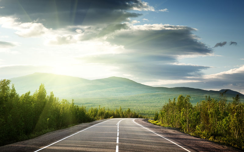 Dazzling sun: road accidents